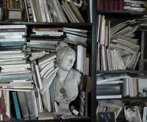 book, library, and theme image