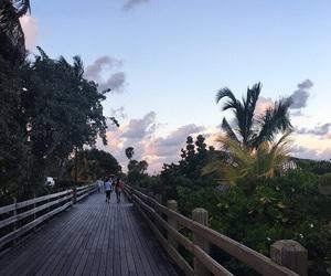 beach, florida, and Miami image