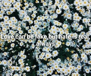 background, hate, and quotes image