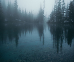 freedom, mist, and reflection image