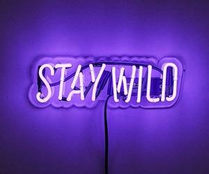 purple, neon, and wild image