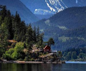 log cabin, tiny house, and homes image
