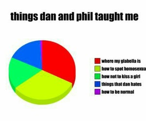 Pie Chart, amazingphil, and dan and phil image