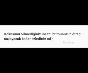 aci, ask, and sözler image