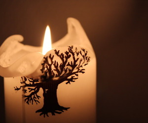 candle, tree, and photography image