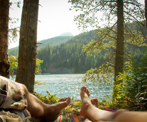 nature, couple, and forest image