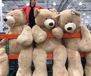 teddy bear, bears, and big image
