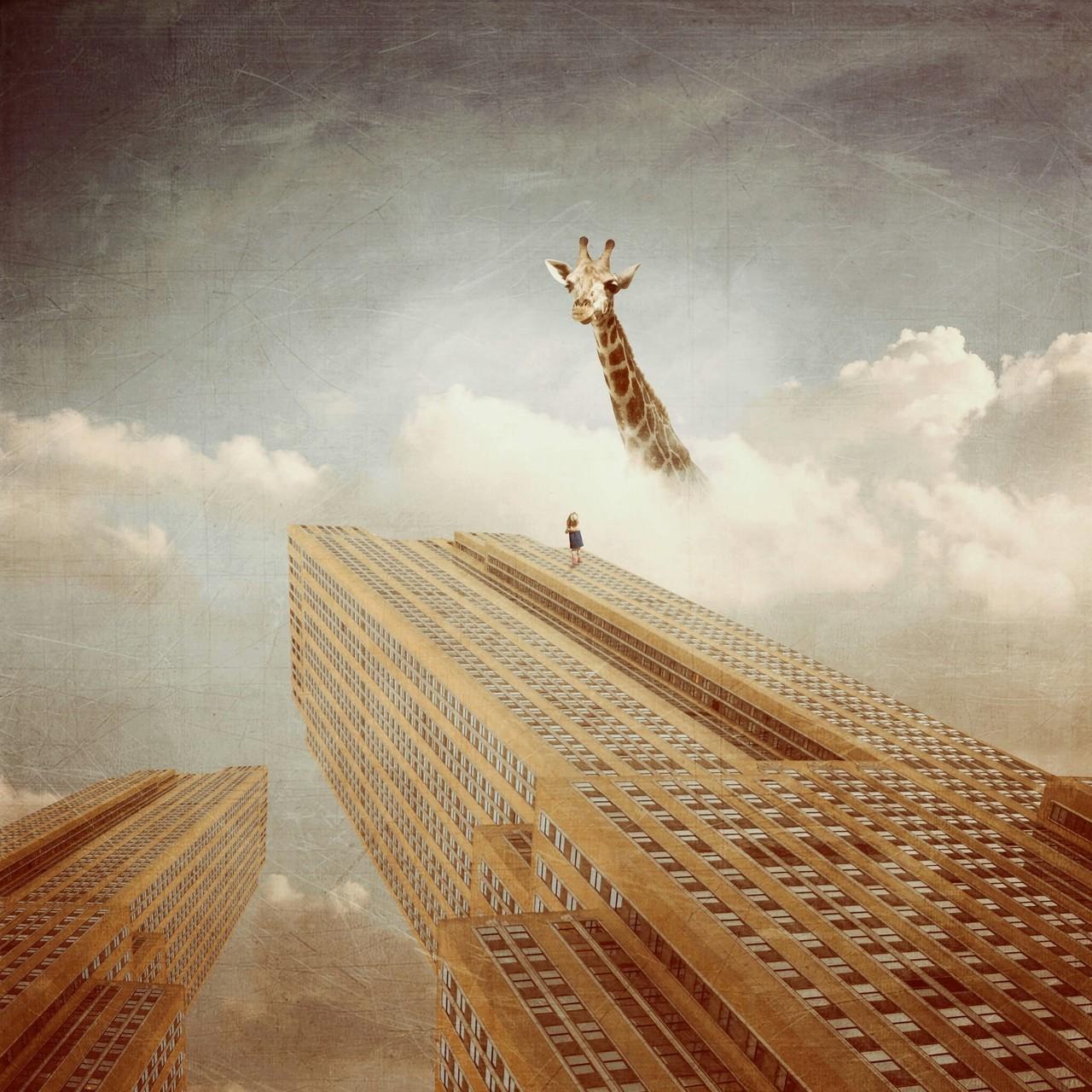 fiction, giraffe, and walli image