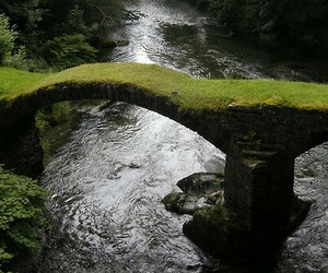bridge, nature, and river image