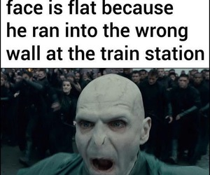funny, quotes, and harry potter image