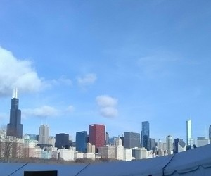 beautiful, chicago, and cities image