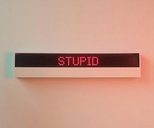 stupid image