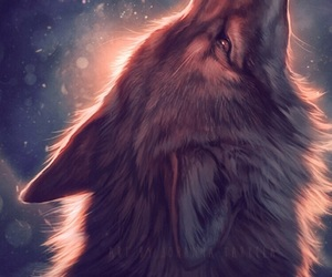 beautiful, night, and wolf image