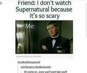 funny, scary, and supernatural image
