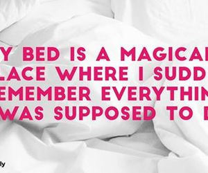 bed, magical place, and funn image