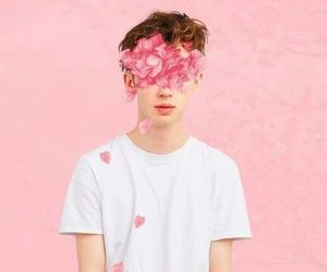 troye sivan, pink, and flowers image
