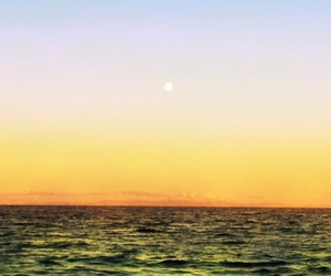 beach, moon, and new zealand image