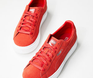 orange, puma, and red image