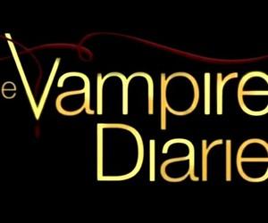 vampire and the vampire diaries image