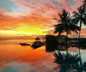 amazing, summer, and beach image