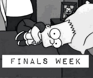 exams, finals, and scared image