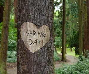 day, spring, and printemps image