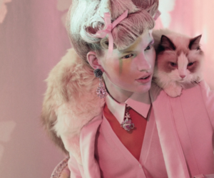 cat, marie antoinette, and pink image