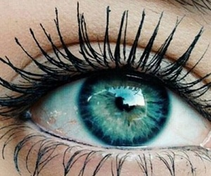 eyes, eye, and mascara image