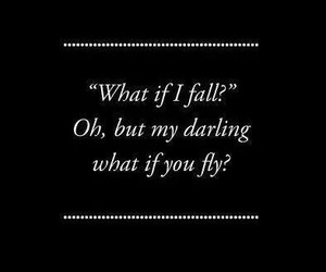 fly, fall, and quotes image