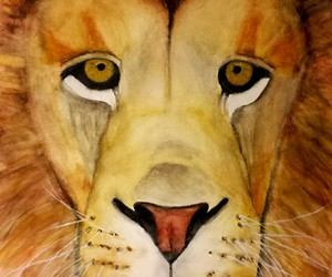 lion, aquarell, and water image