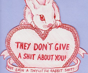 rabbit, quotes, and shit image
