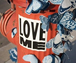 blue, love, and butterfly image