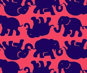 elephants, wallpaper, and background image
