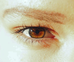 brown, brown eyes, and eyes image