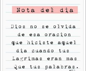 lágrimas, frases, and quotes image