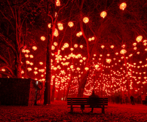 light, red, and night image