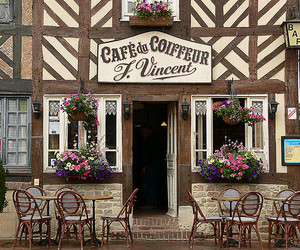 beautiful, cafe, and flowers image