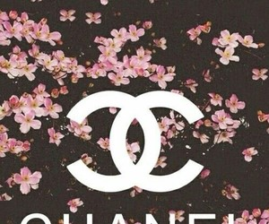chanel, flowers, and nice image