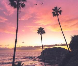 beach image