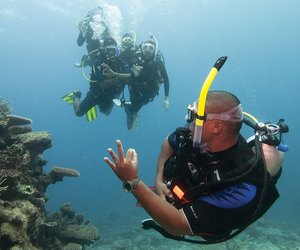 dive, scuba, and diving image