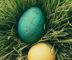 eggs, esther, and green image