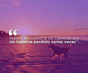 frases, life, and texto image