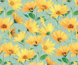 background, flowers, and yellow image