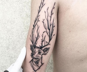 deer, plant, and sketch image