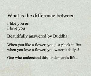 boyfriend, Buddha, and crush image