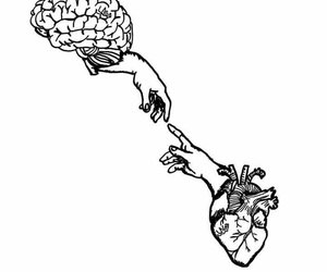heart, brain, and wallpaper image