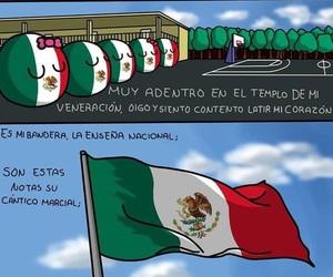 mexico, mexican flag, and bandera de mexico image