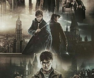 harry potter and fantastic beast image