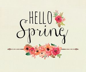 beautiful, flower, and hello spring image