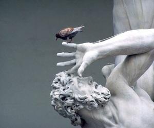 art, bird, and museum image